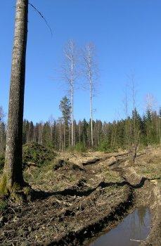 valtion työt Tampere